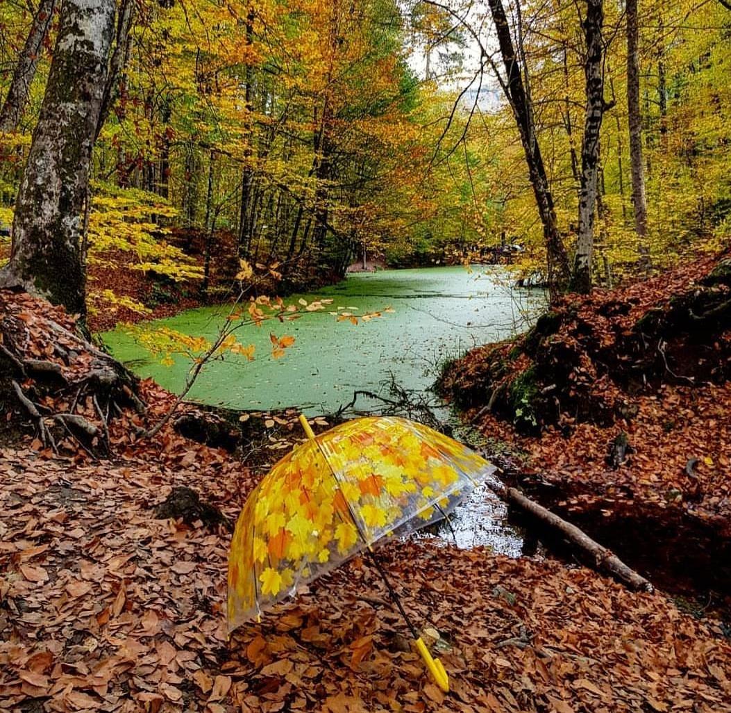 Günübirlik Yedigöller Doğa ve Kültür Turu